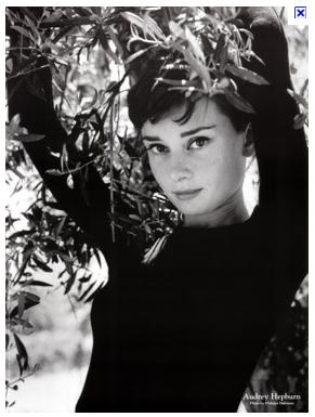 The Face of Nicole Kidman (3/4)